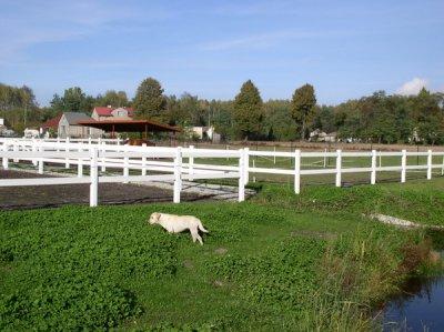 Wysokiej jakości wytrzymałe ogrodzenia farmerskie