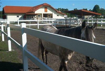 zalety plastikowych ogrodzeń dla koni na wymiar